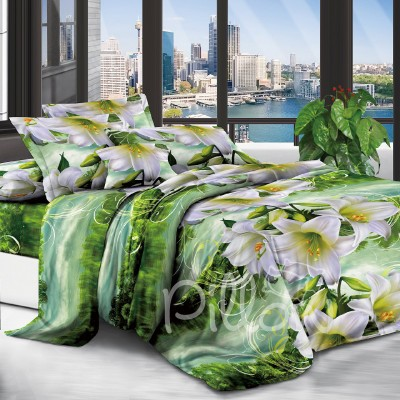 Комплект постельного белья полиэстер «cy-13000» NazTextile