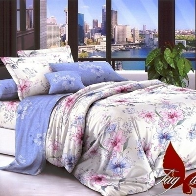 Комплект постельного белья поплин «1714» TAG