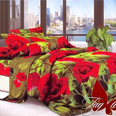 Комплект постельного белья поликоттон «XHY344» евростандарт | TAG