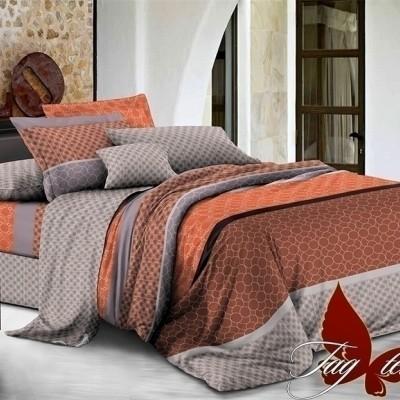 Комплект постельного белья поплин «1709» TAG