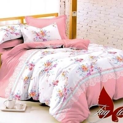 Комплект постельного белья поплин «1705» TAG