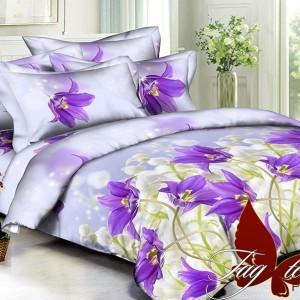 Комплект постельного белья полисатин «PS-BL098» семейный | TAG