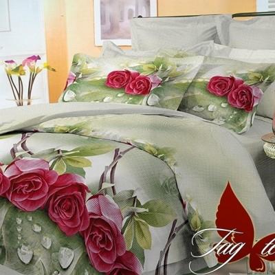 Комплект постельного белья поликоттон «BR3246» TAG
