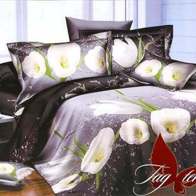 Комплект постельного белья ранфорс «R2095» TAG