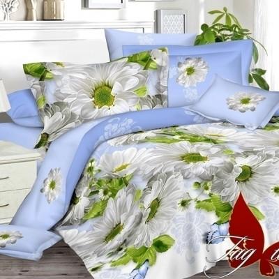 Комплект постельного белья сатин люкс «S-101» полуторный | TAG