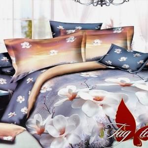 Комплект постельного белья ранфорс « R105» TAG
