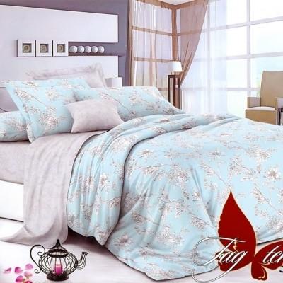 Комплект постельного белья сатин люкс «S-134» TAG