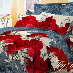 Комплект постельного белья поликоттон «BR3296» TAG