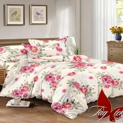 Комплект постельного белья сатин люкс «S-109» двуспальный | TAG