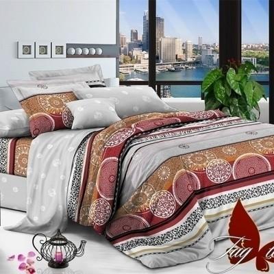 Комплект постельного белья поплин «1711» TAG