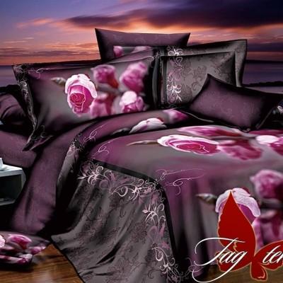 Комплект постельного белья ранфорс «R2266» TAG