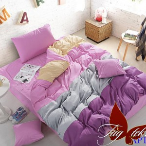 Комплект постельного белья поплин «Color mix APT023» TAG