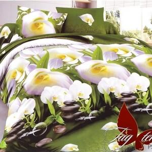 Комплект постельного белья полисатин «PS-NZ1940» TAG