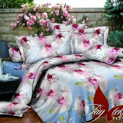 Комплект постельного белья поликоттон «XHY5035» TAG